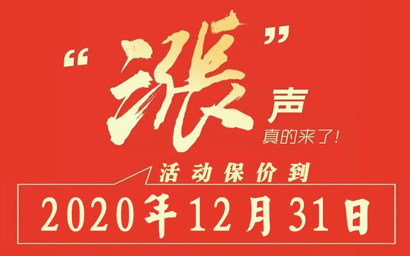 13保价到2020年12月31日.jpg